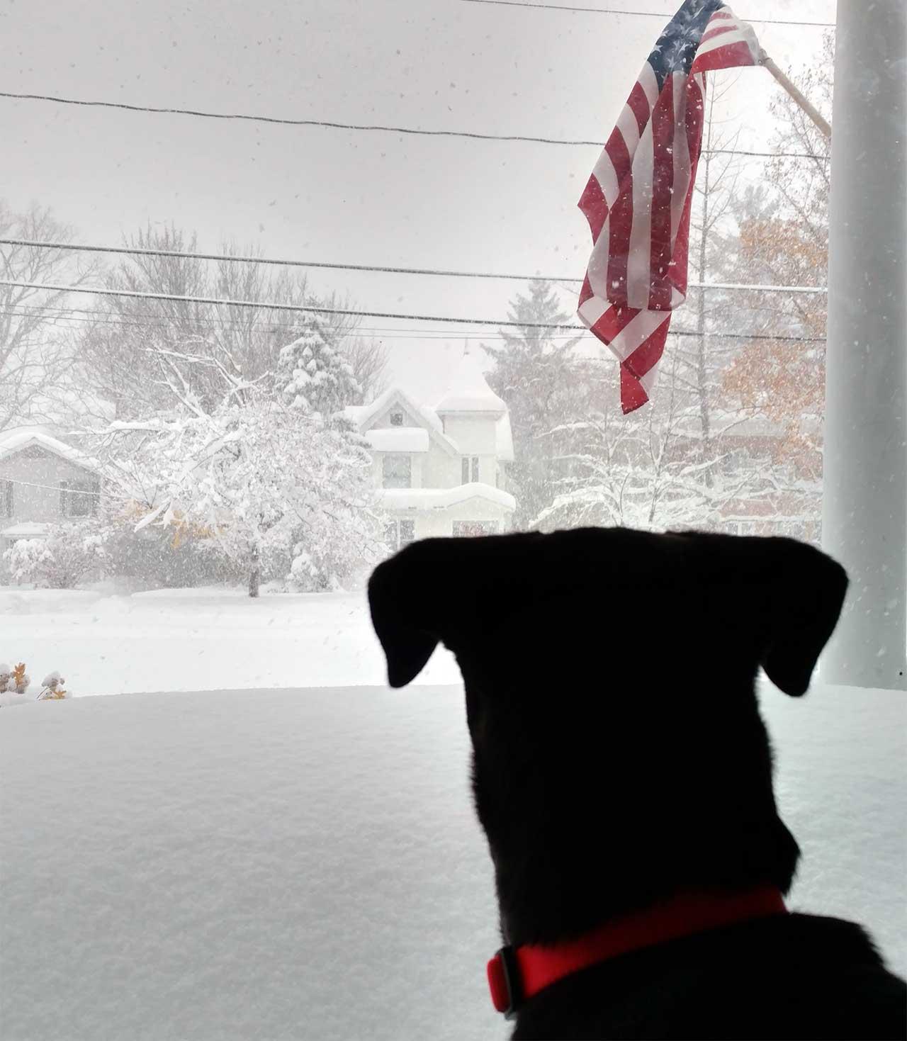 Snow Day in Seneca Falls