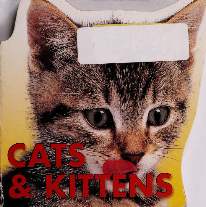 Cats & Kittens(Shaped Board Book) by The Staff of Paradise Press